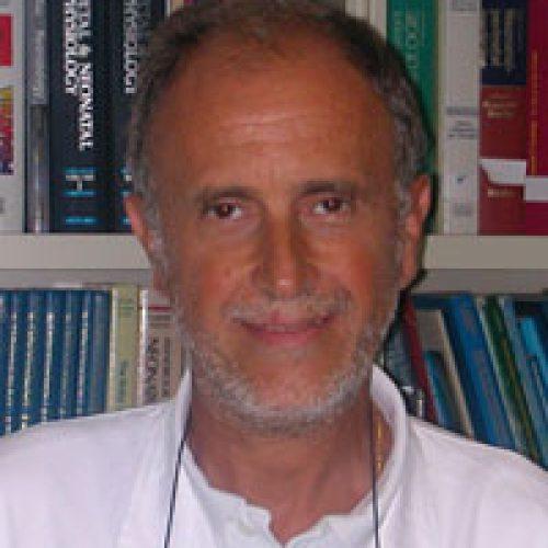 Enrico Bertino